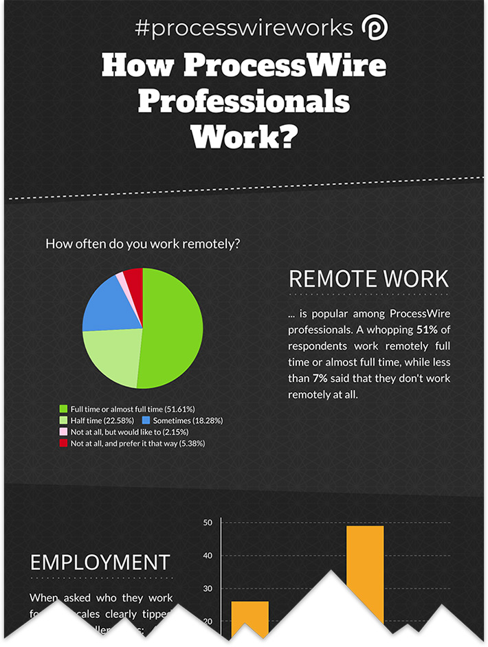 processwireworks-infographic-preview-1.jpg